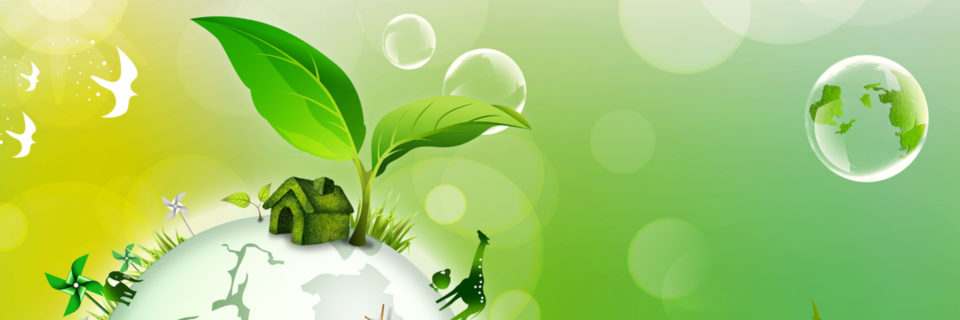 To Generate Awareness among the Masses and Policy Makers for Saving the Environment